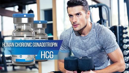 HCG-500x283.jpg